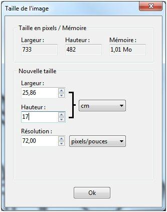 PreparerMotifAppliqué21