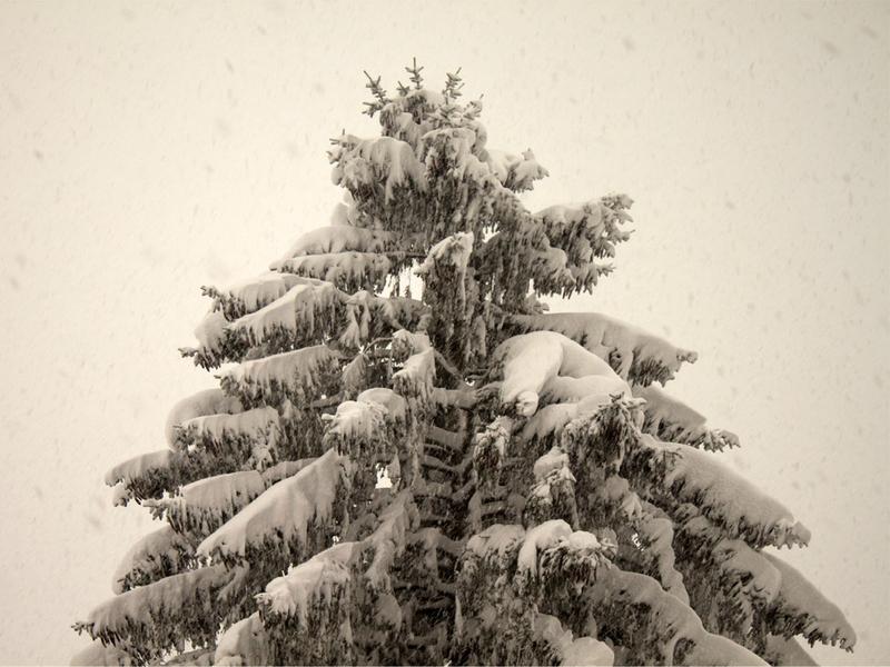 neige_4