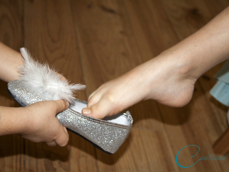 Cendrillon-chaussure-vair