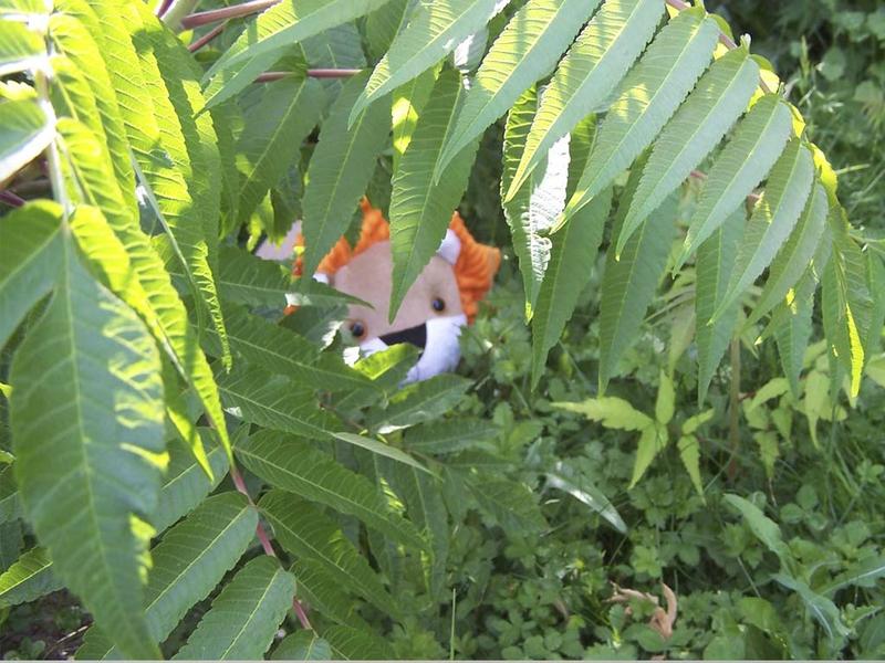 Doudou-Lion-jungle