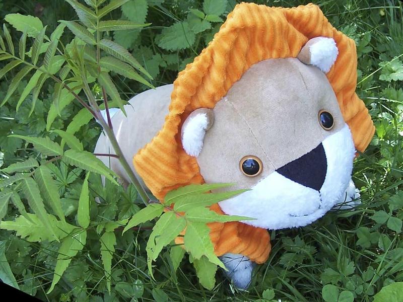 Doudou-Lion-jungle2