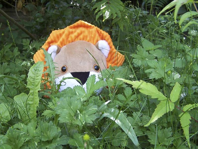 Doudou-Lion-jungle-hostile
