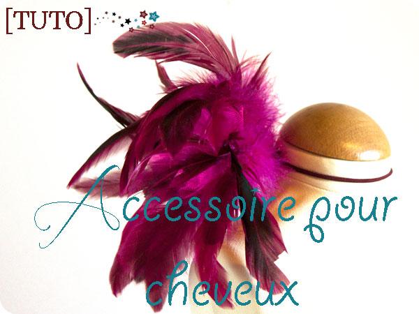 Tuto-Plumes-Cheveux